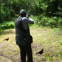 wooded-course-to-shoot-sporting-clays